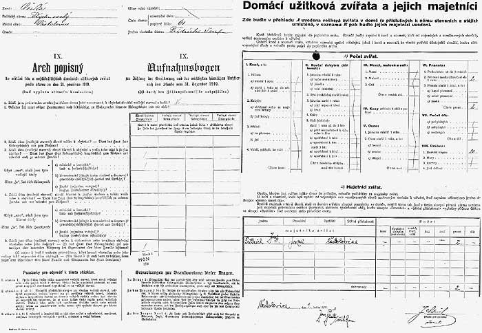 1910 czech census records